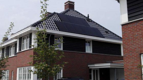 10 JA Solar 295 Wp mono black panelen